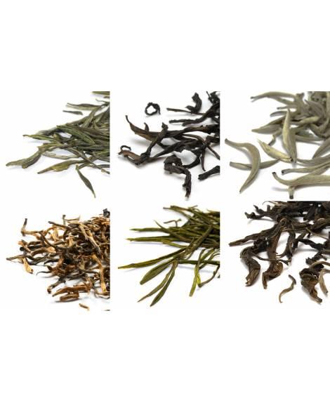 pack de 6 variedades de té