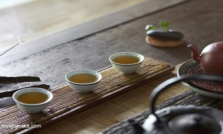 Tea, buddism and L-teanine