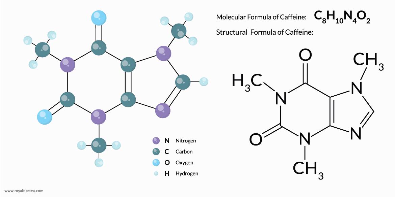 formula-molecular-y-estructural-de-cafeina