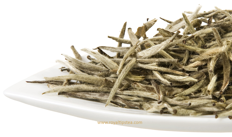 hojas secas de te blanco chino agujas de plata