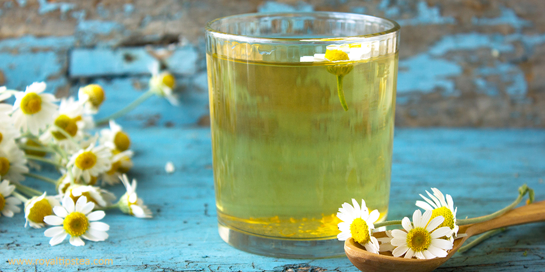 La infusión de camomila y sus propiedades | Blog Royal Tips