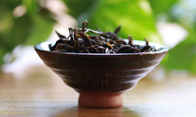 Qué son té rojo y té pu-erh: sus propiedades