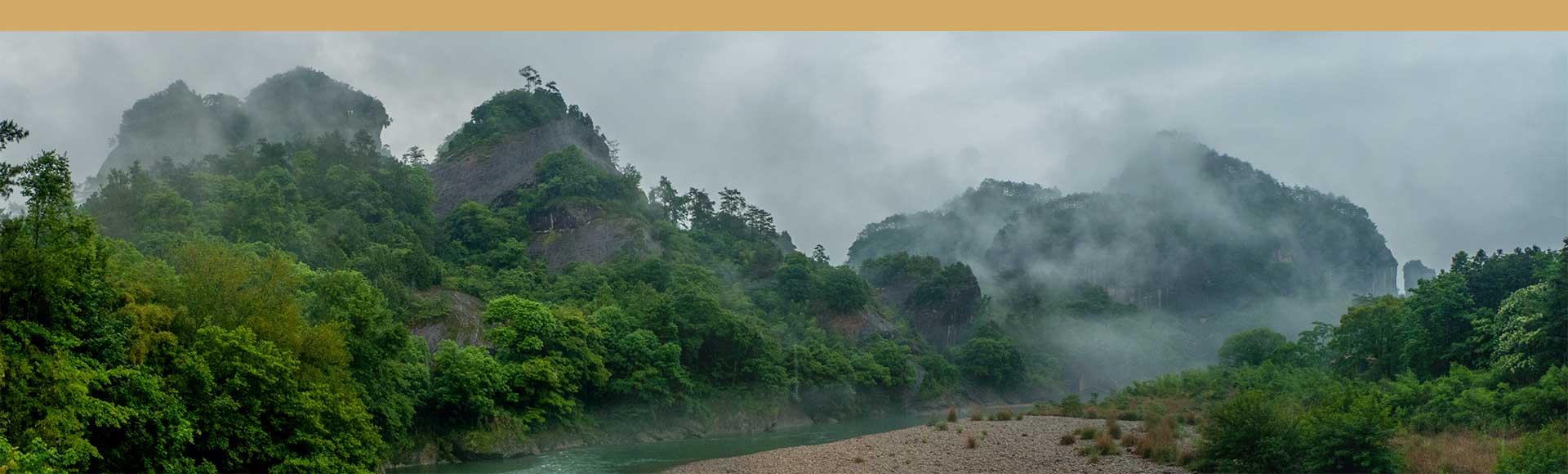 Da-Hong-Pao-Wuyi-Shan-Fujian.jpg