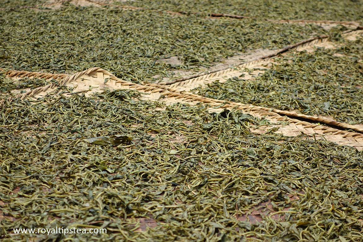 sun drying maocha loose leaf puerh tea